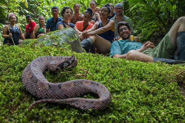 Global Guttman students in the Ecuadorian jungle