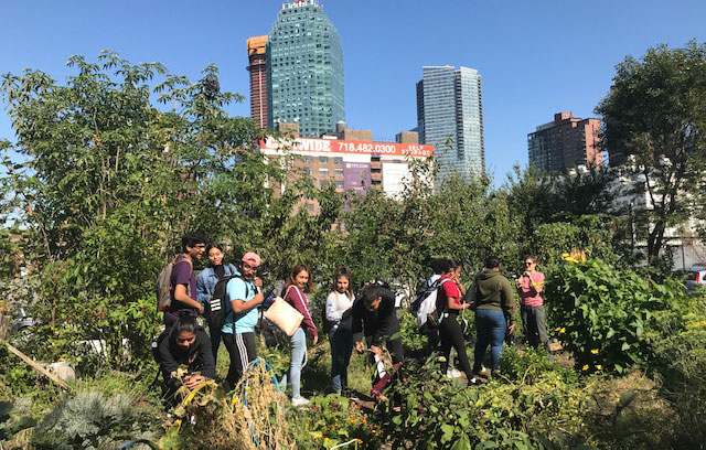 Group of students at an urban farm surrounded by greenery with a city landscape in the background