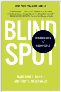 Blindspot book ocver