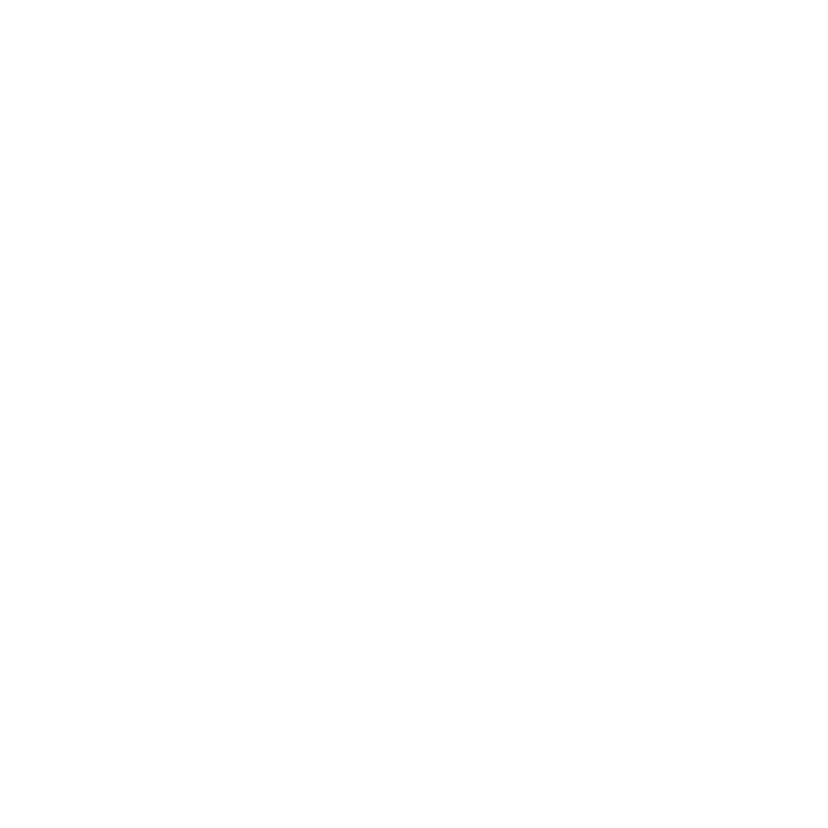Icon of a document page showing forward-pointing arrows