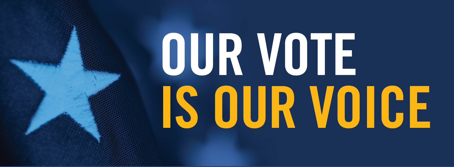 Our Vote is Our Voice banner