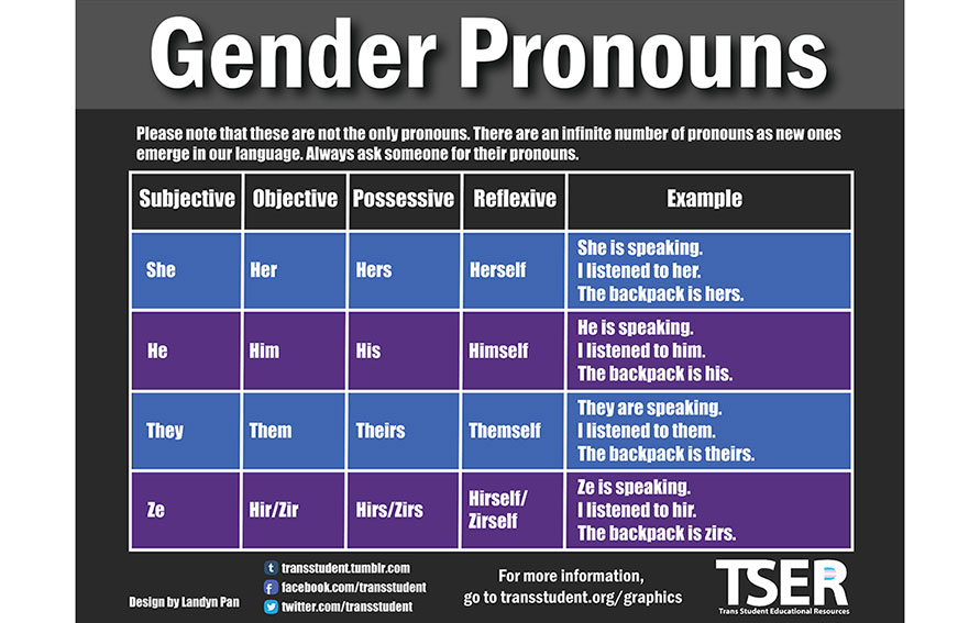 Gender pronouns graphic